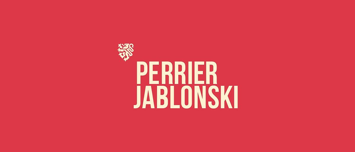 深圳品牌设计 深圳品牌策划 Perrier Jablonski网络通信品牌形象设计 标志设计