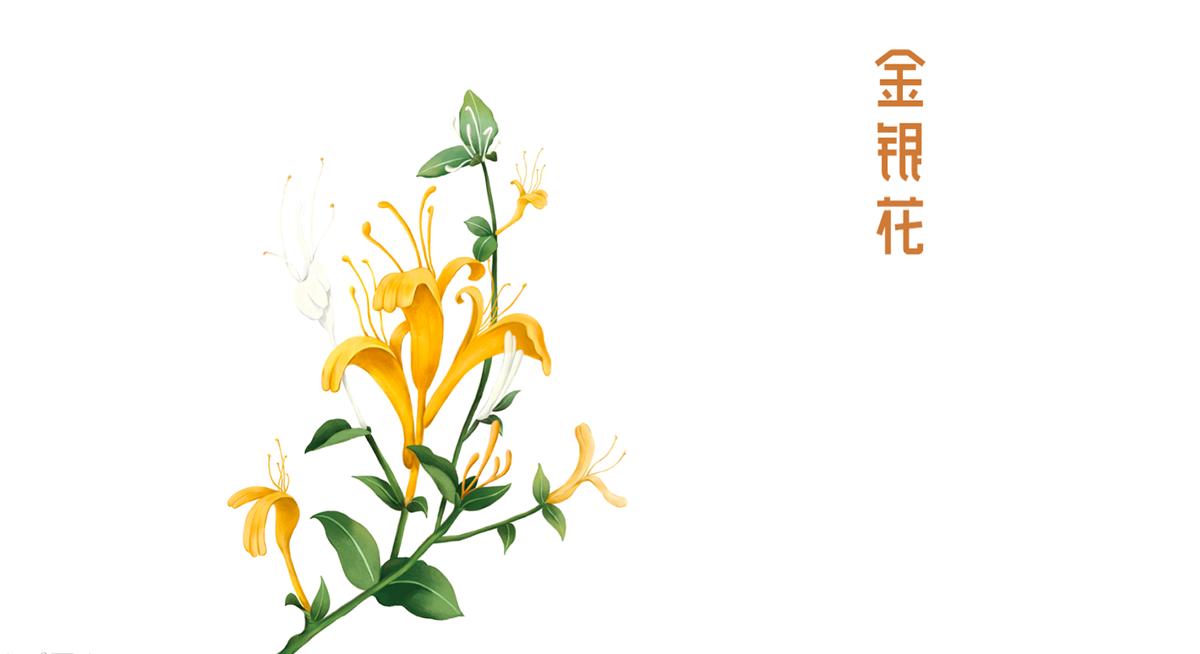 宝瓶堂传统滋补行业众鑫国际 体育战略升级-左右格局